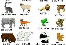 Tiere2