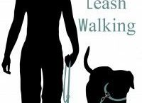 leash pulling
