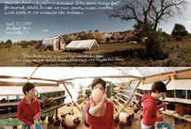 Sustainability / by CUESA