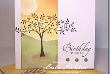 Cards and Tags / by Christy Hawkins