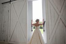 Wedding 》Pictures