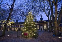 Christmas / Each year, authentic festive decorations, lighting, music and greenery transform the Geffrye's period rooms, giving visitors an evocative insight into how Christmas has been celebrated in middle-class homes in England over the past 400 years.