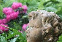 Garden next to the Danube / Our romantic garden