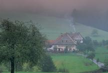 Schwarzwald <3 daheim