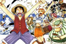 One Piece Color Cover