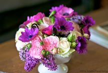 Floral Arrangements  / by Michelle Hawkins