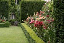 In a English country garden