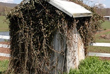 outhouses / by Sandy Kluth