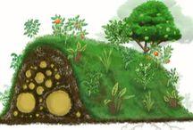 Garden Design / by Ruth Hill