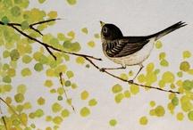 Birds / by Yona Simons