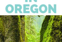 PACIFIC NORTHWEST / Travel guides, ideas, food, and photos of things to do in the Pacific Northwest. Oregon and Washington State (Portland and Seattle) trip ideas. Oregon Coast Road trip ideas and itinerary.