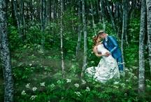 Weddings / Some of my wedding shots