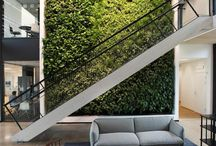 green plants in architecture