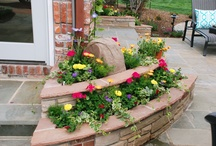 Landscape ideas / by Kathy Smith