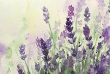 Lavender / Art