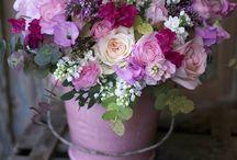 Flowers of World