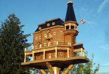 Randy's birdhouses