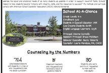 School Counseling Data