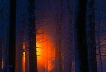 • SEASONS | Winter . Christmas ❄️