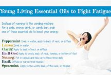 Young living Essential oils / by Kim Penn