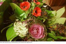 #Floristerias #Flor_cortada