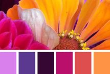 Color Ideas / Combinaciones de colores, armonía, contrastes. / by Alejandra Aceves