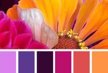 ~ palette ~