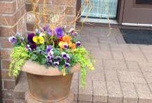Spring Pots / A sample of our spring garden pots!