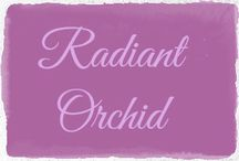 Radiant Orchid (purple) / 2014 Pantone Color of the year.