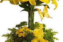 Arranjos Amarelo