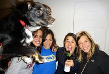 The Most Hilarious Dogs Photobombs Of All Time / Check out the most hilarious dog's photobombing to an entire diverse level…