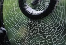 SZAKRÁLIS GEOMETRIA / spirál vonal, mint a világegyetem egyik egyetemes jele ...