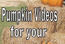 Halloween/pumpkin