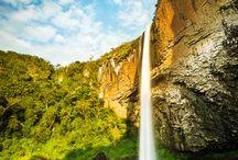 BrazilBrasil / by Taila Wade