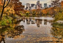 Amazing Autumn in NewYork  / by Cosmopolitan Hotel TriBeCa