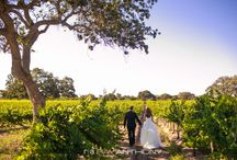 Firestone Winery / Beautiful Firestone Winery in Santa Ynez, California