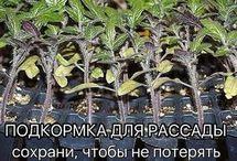 ВНЕ РАМОК