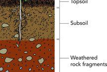 Soil & rocks