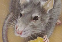 Little Critters Art / Rabbits, guinea pigs, hamsters, gerbils, mice and rats.  Some of my favourite little critter art.