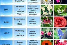 πίνακες λουλουδιών
