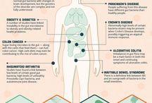 Micro biome diet