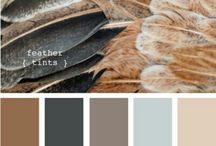 site colours