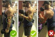 Exercícios Musculação.