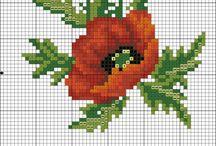 Flowers, plants/kwiaty, rosliny