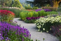 """In the garden / """"God Almighty first planted a garden. And indeed, it is the purest of human pleasures.""""  Francis Bacon"""