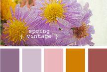 Color / by NancyC