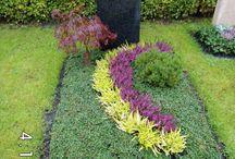 Mamas kleiner  Garten