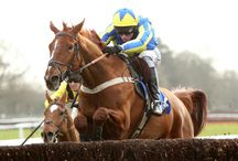2014 Winners at Fontwell Park Horse Racing / All the winners of the year at Fontwell park horse racing and events. 2014