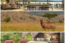 Magashi Camp / Overlooking Lake Rwanyakazinga in the north-eastern section of Rwanda's Akagera National Park, Magashi Camp opens in December 2018 as a six-tented camp with access to some of the most scenic savannah in east Africa: open plains, woodlands, lakes, swamp, and grassy low mountains. Elephant, buffalo, lion, leopard, crocodile, hippo, spotted hyaena, zebra, topi, roan, eland and giraffe are just some of the wildlife seen here.