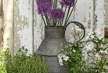 floral arrangements/decor